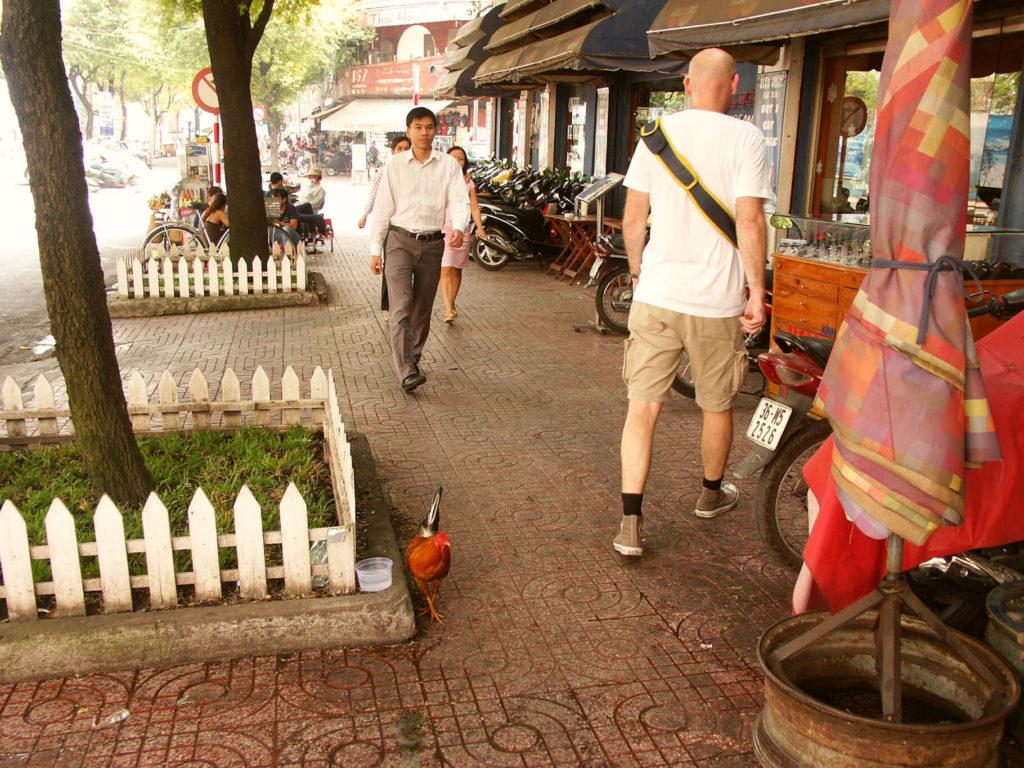 Gehsteig in Saigon. Ein Hahn und ich