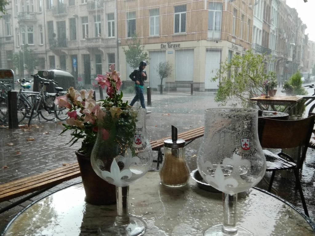Starker Regen im Garten von Kamiel in Antwerpen