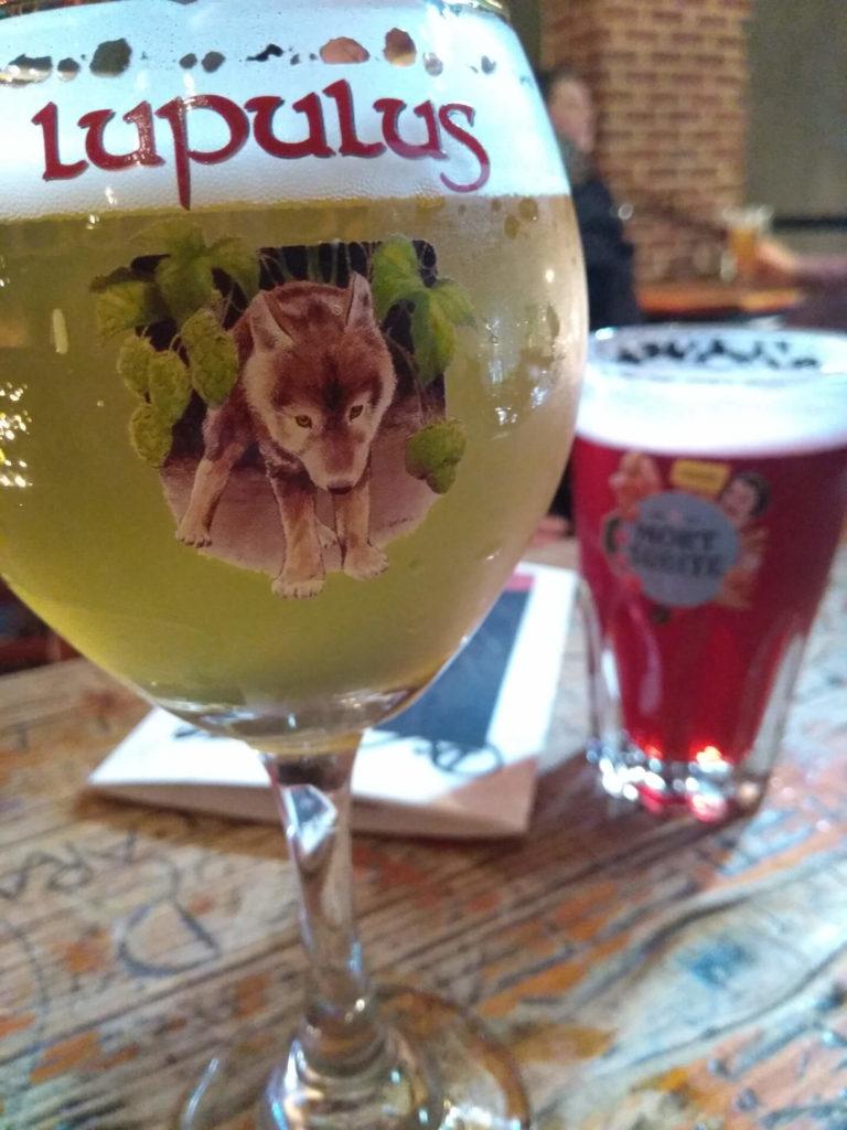 Lupulus und Mort Subite Bier