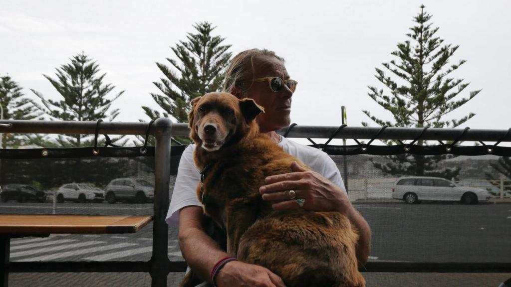 Stammgast Bondi Trattoria. Hund auf dem Schoß